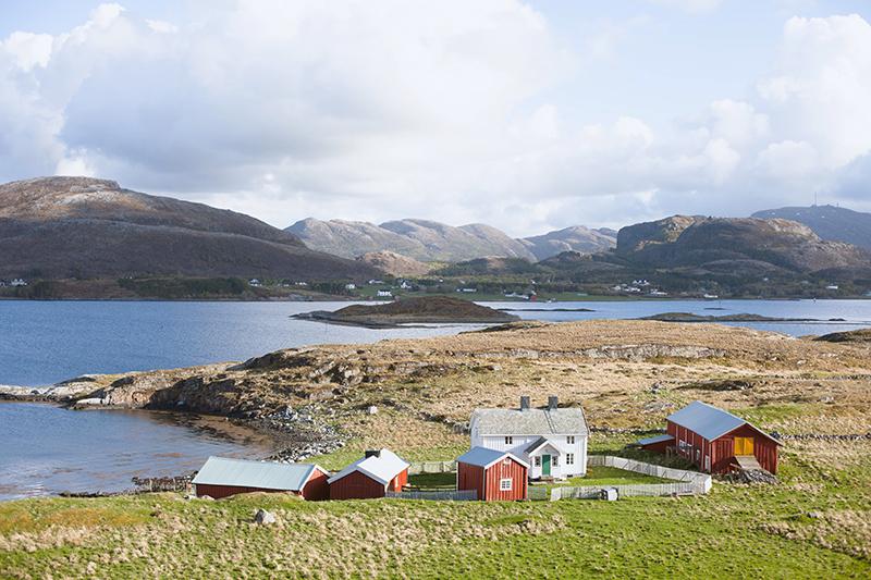 Tranøya – Kristine Graneng