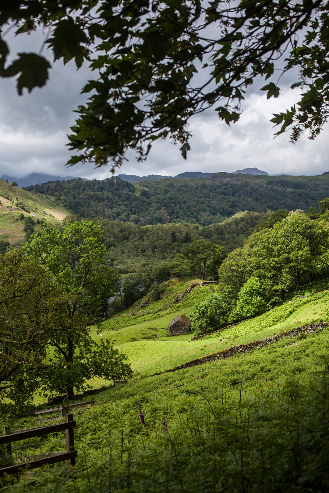 Coffin Road, Rydal